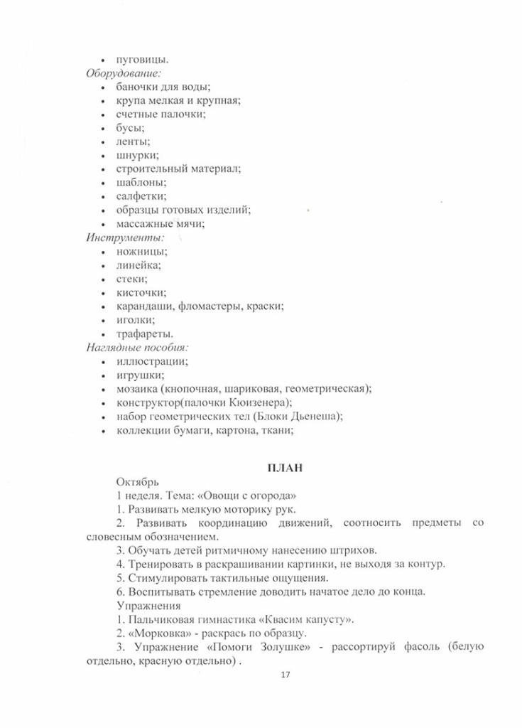 programma_po_krujkovoi_rabote_veselie_loshadki-17